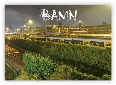 BAMN #2