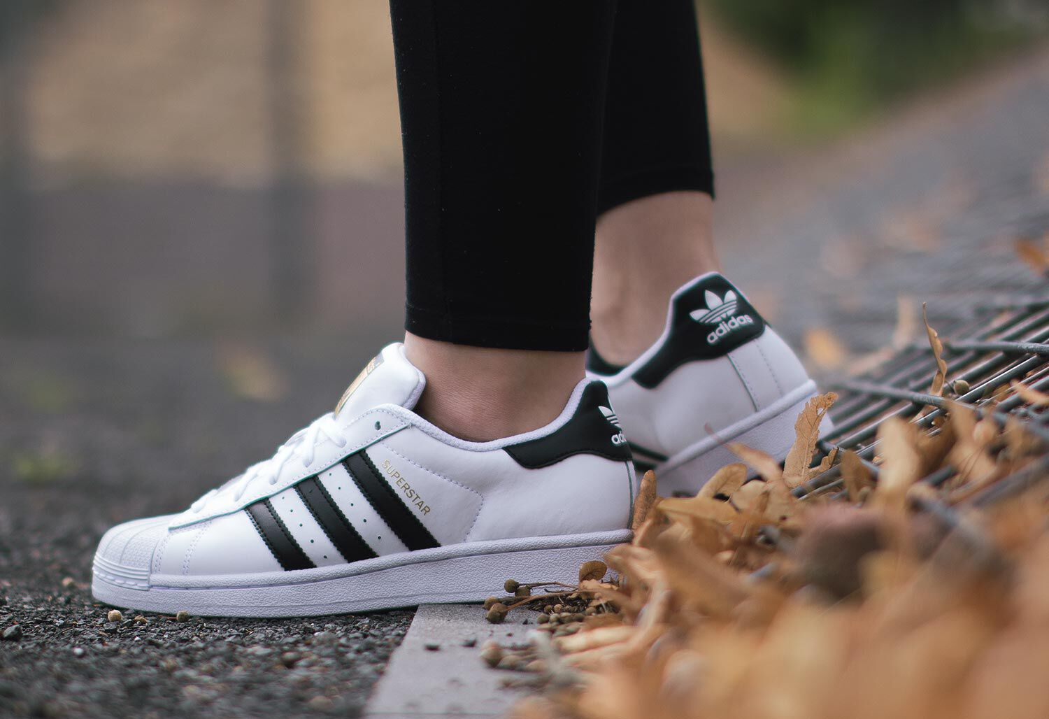 adidas Superstar J W - Sneakers Low at Stylefile